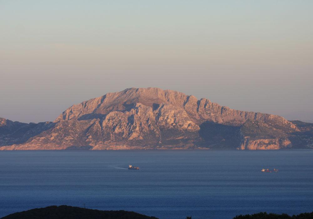 Excursión Barco Bahía Algeciras