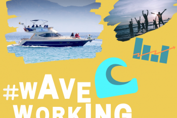 waveworking Marina Blue cartel 09 19